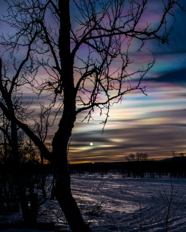 A brilliant display of polar stratospheric clouds over Kiruna. The disc of the sun clearly visible.