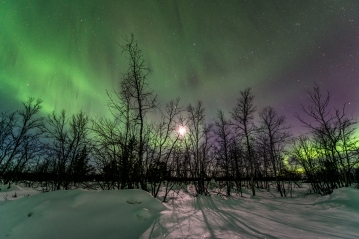 Aurora and bright moonlight.