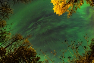 This corona covered almost the entire sky. This fisheye view features the autumn colored trees against the green exploding sky.